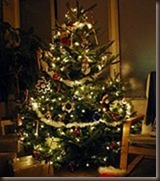 christmas tree by wolfsavard on flickr 2